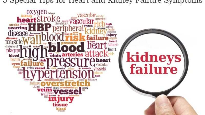 Heart and kidney failure symptoms are straightforward to identify in this modern world. Heart and kidney disease are major health problems because of unhealthy foods and lifestyles. alternative treatment, Asymptomatic Proteinuria, Ayurveda, cancer, chronic illness, COVID-19, dialysis, diet plan, fitness, Glomerulus, healthy lifestyle, Hematuria Syndrome, kidney cancer, kidney care, kidney Cyst, kidney disease, kidney disease symptoms, kidney donor, kidney health, Kidney stone, kidney transplant, kidneys, location of kidneys, nephrology, Symptoms of Kidneys not Filtering, types of kidney stones, what is a kidney stone, What is kidney stone pain like,
