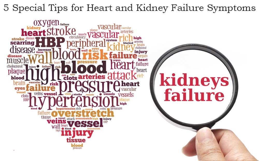 5 Special Tips for Heart and Kidney Failure Symptoms