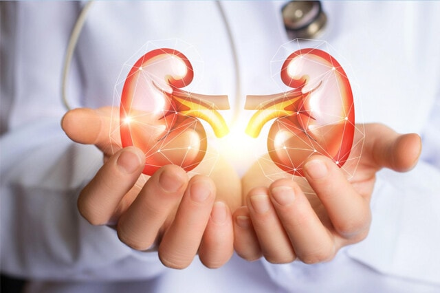3 Painless Symptoms of Kidneys not Filtering
